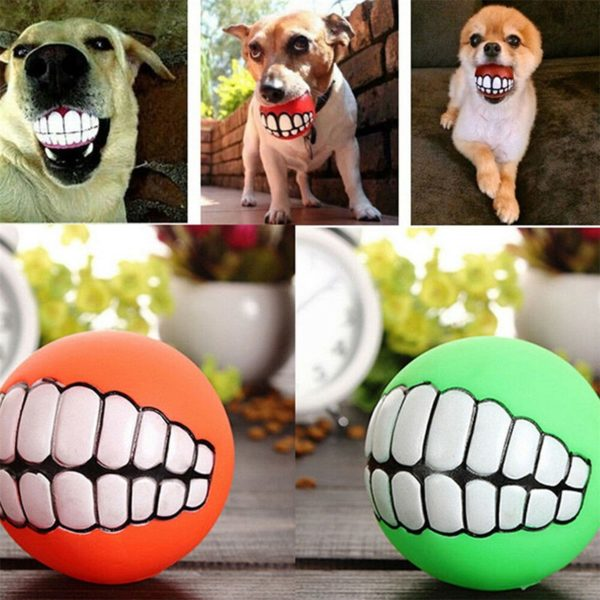 dog chewing ball