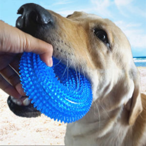 Dog Toy Chew Balls